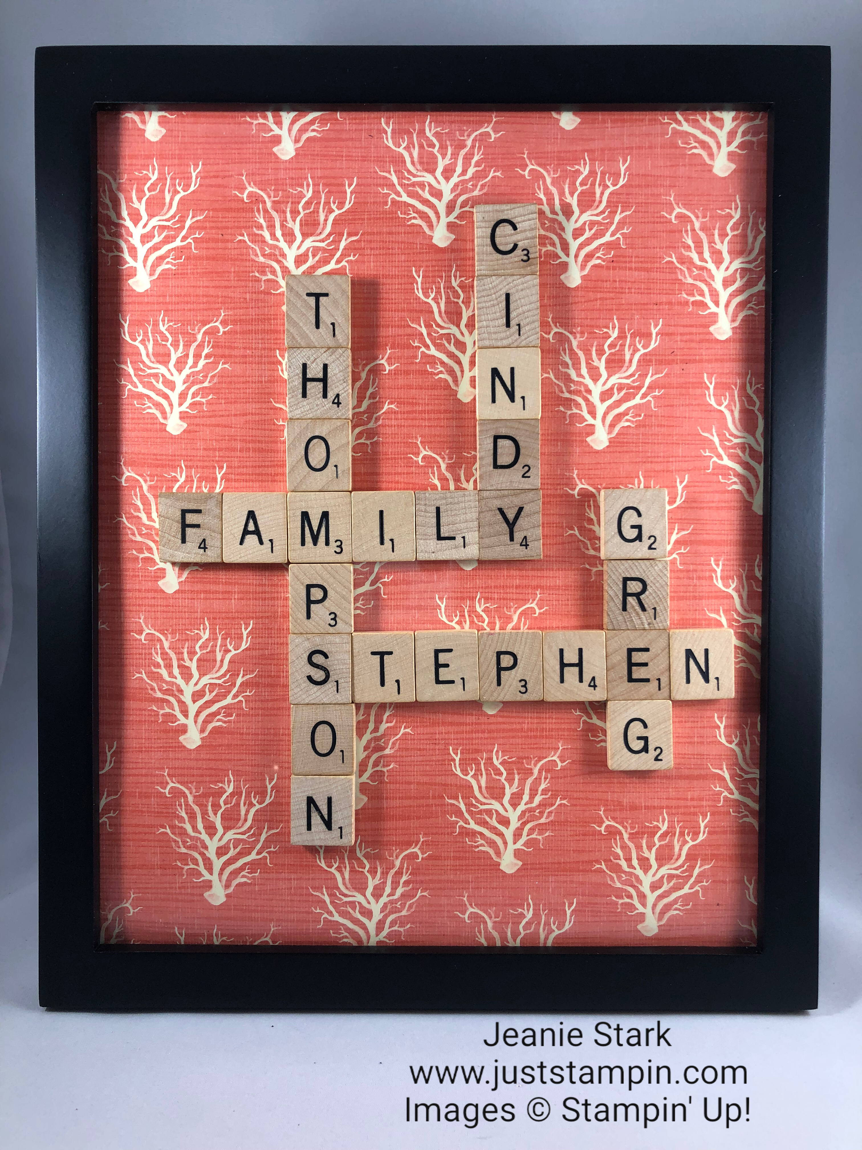 Stampin Up Designer Series Paper family gift idea - Jeanie Stark StampinUp